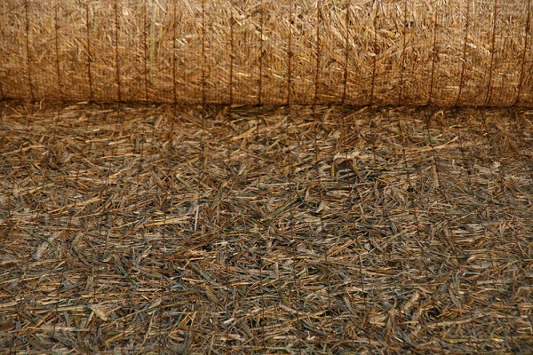 Grünfix ohne Saatgut Typ 4