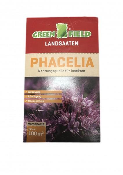 Phacelia 0,5 kg